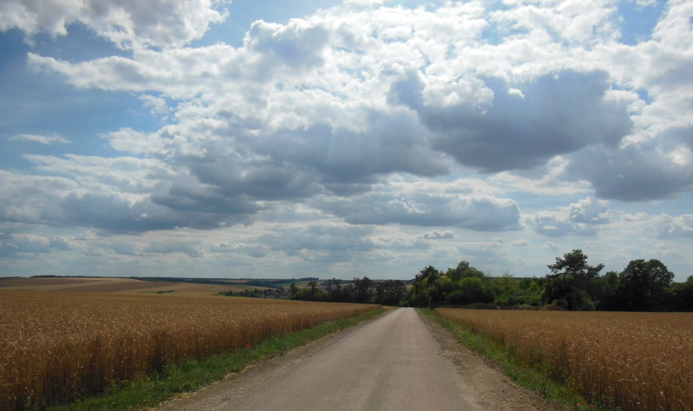 La campagne au-dessus de Sognes : la route jusqu'à l'horizon , bordée de champs de céréales